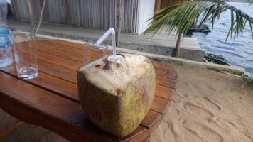 Ma noix de coco sans fleur lol