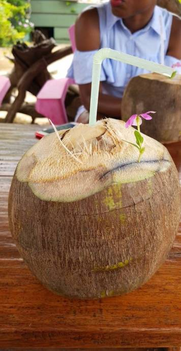 La noix de coco de ma copine